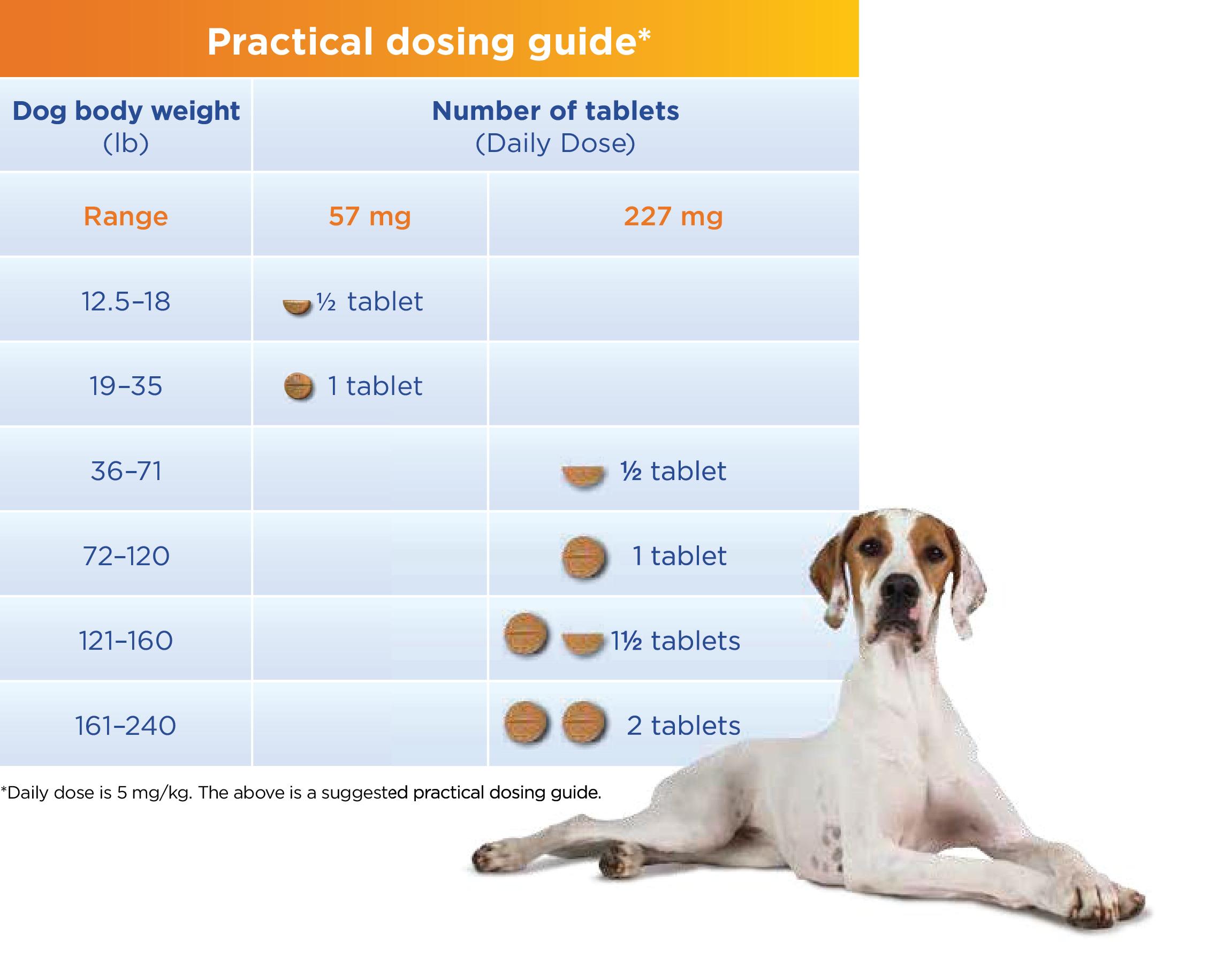 dosage – Previcox